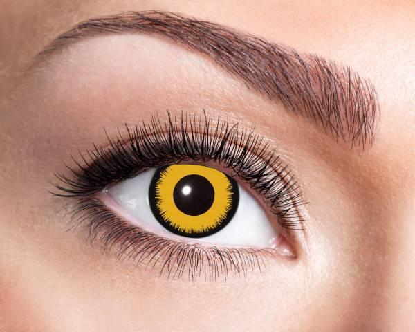 Kontaktlinsen Angelic Yellow 3 Monate - Abaddon Mystic Store